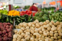 Palm Springs Certified Farmers Markets